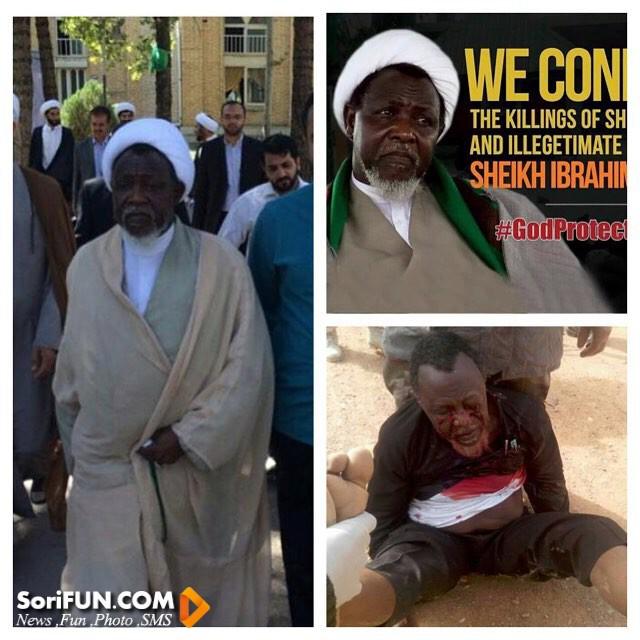 سیاه پوست شیعی اهل نیجریه