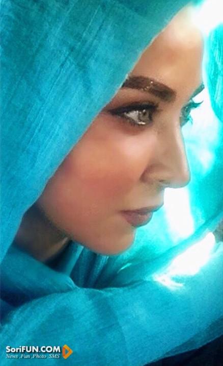 بیوگرافی فقیهه سلطانی