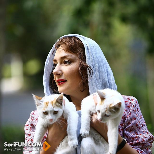 هانیه توسلی